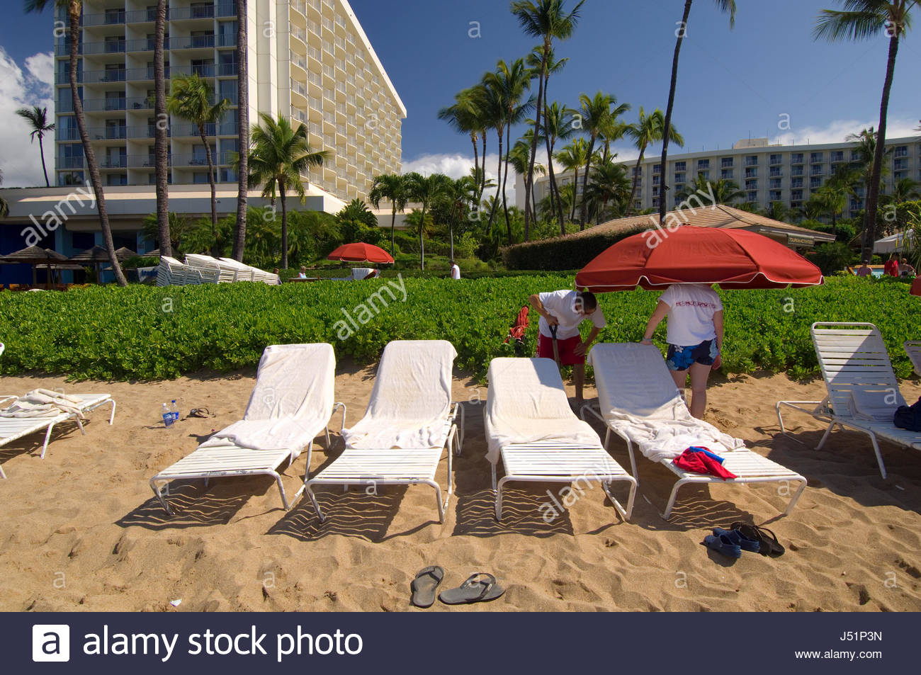 Beach Boy Setting Up Lounge Recliners And Umbrellas For