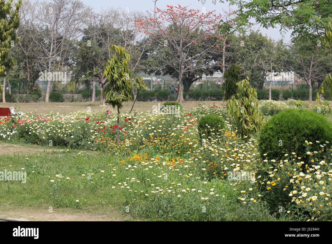 Japanese Park Rohini Delhi India Stock Photo Alamy