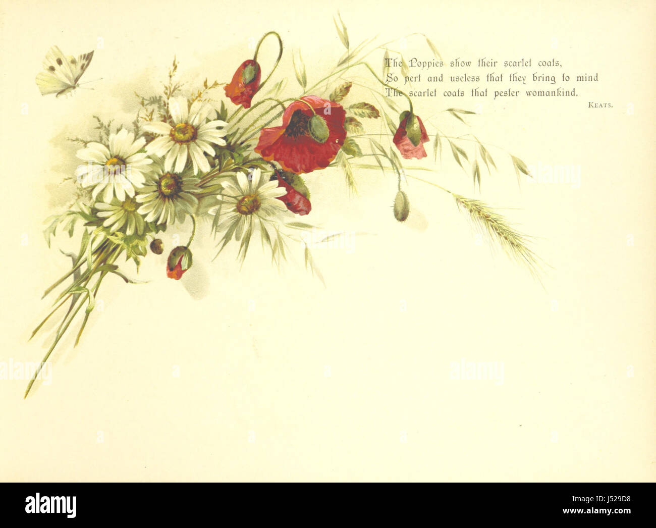 A Pathway of Flowers, an album for autographs, and ... verses ... With an introduction [in verse] by Helen M. Waithman - Stock Image