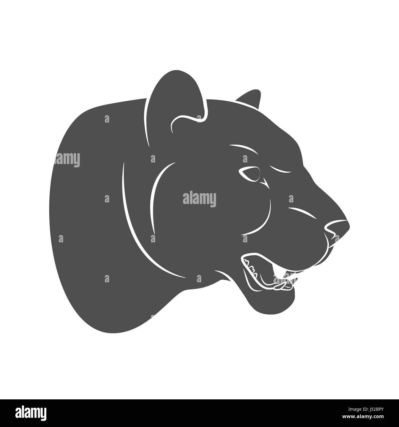 Silhouette predatory big cat. Leopard on a white background. Photo illustration. Stock Photo