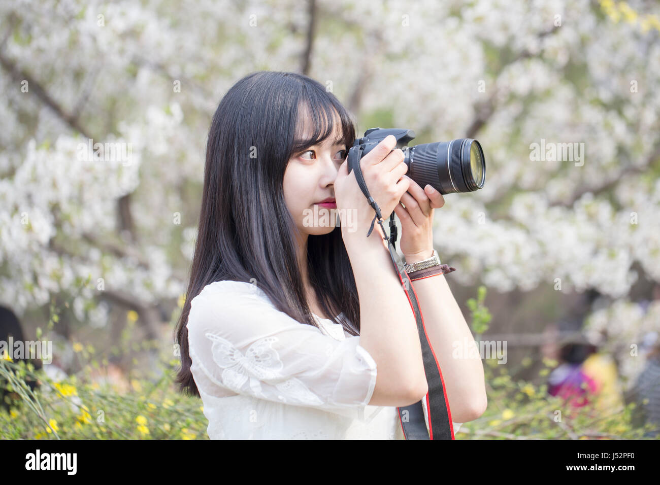 Pretty girl with DSLR camera - Stock Image