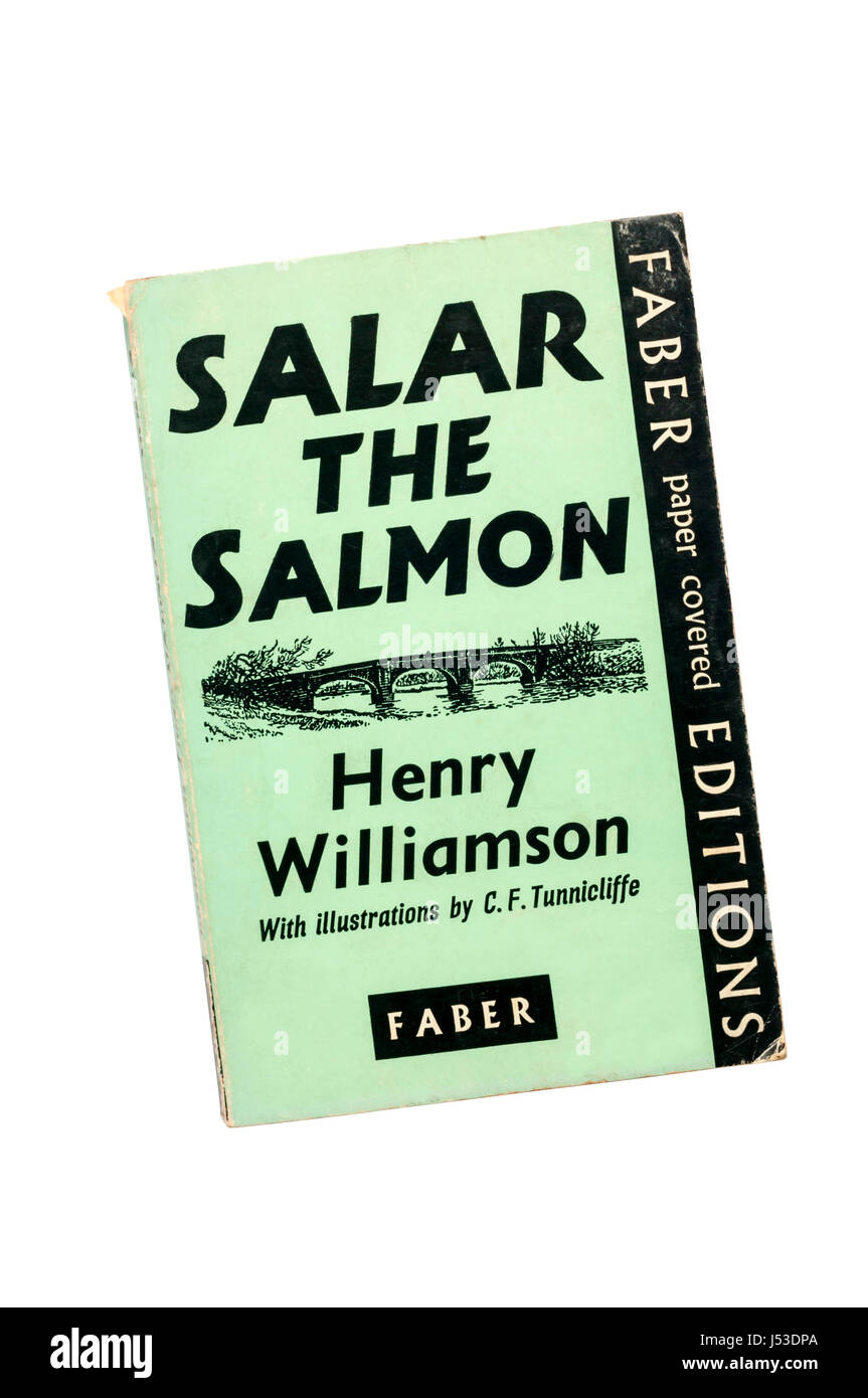 A paperback copy of Salar The Salmpn by Henry Williamson.  First published in 1935. - Stock Image