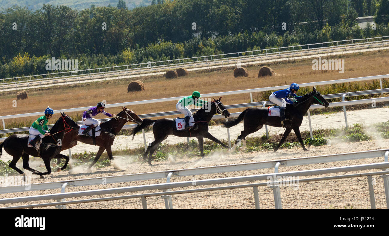 The race for the prize of the Jockeys-kluba in Pyatigorsk. Stock Photo