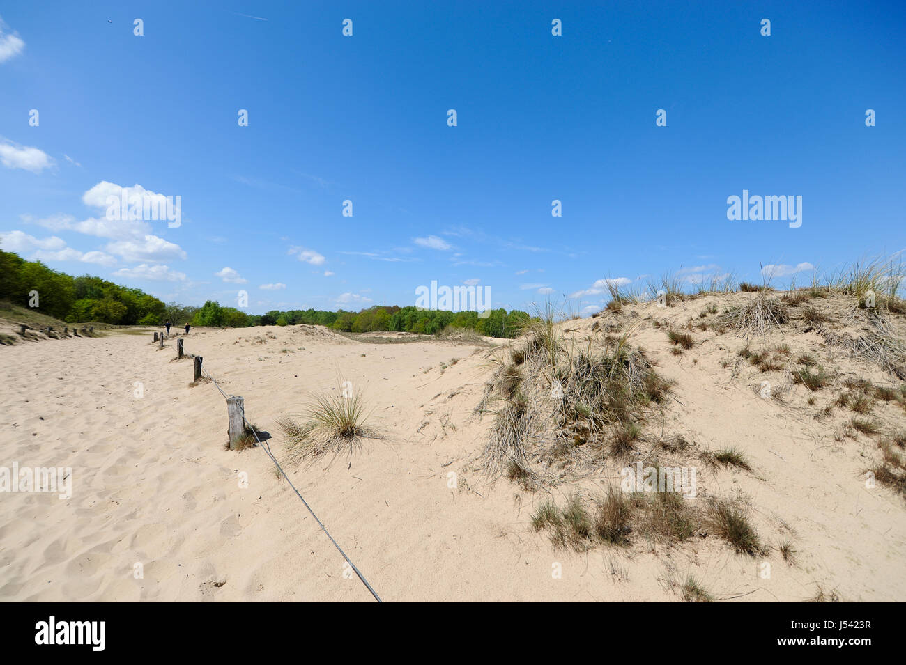 Landscape of the Boberger Dunes, or Boberger Duenen, in south west of Hamburg, Germany. Stock Photo