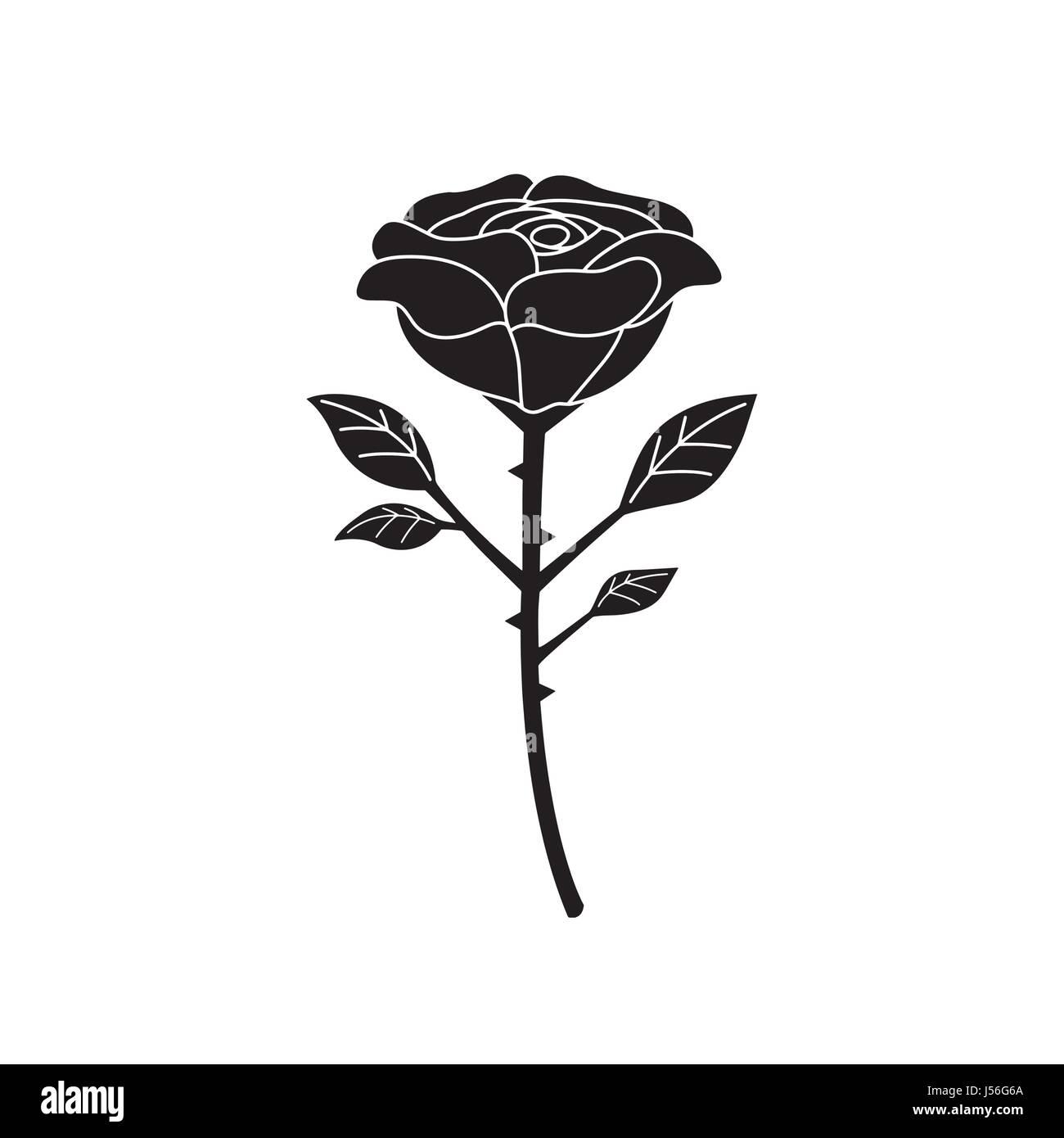 Rose Tattoo Design Stock Vector Art Illustration Vector Image