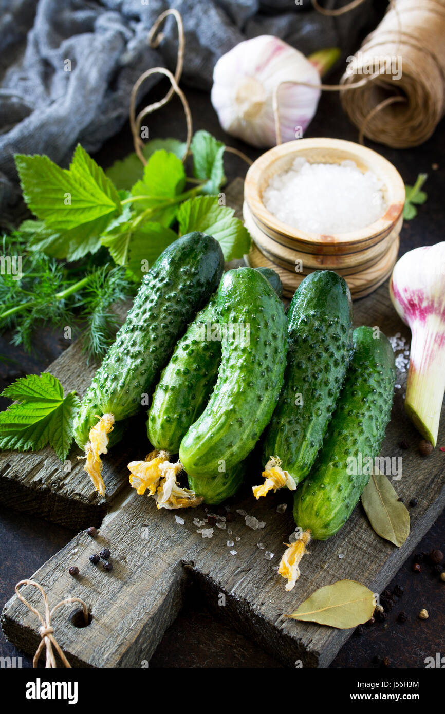 Homemade canned vegetables. Preservation of fresh and pickled cucumbers, garlic and spices on the kitchen table. - Stock Image