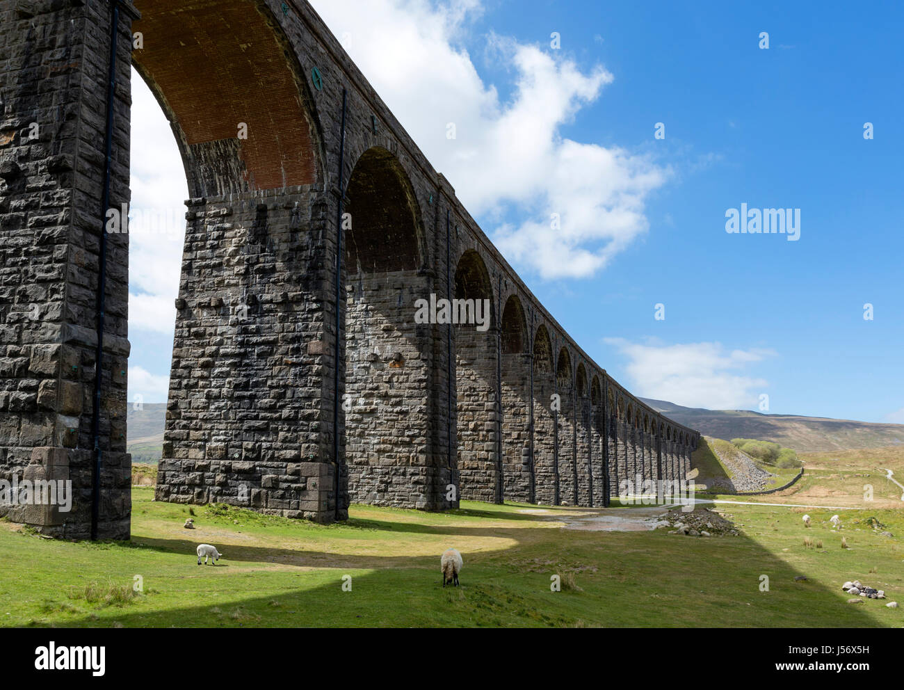 Ribblehead Viaduct, Yorkshire Dales National Park, North Yorkshire, England, UK - Stock Image