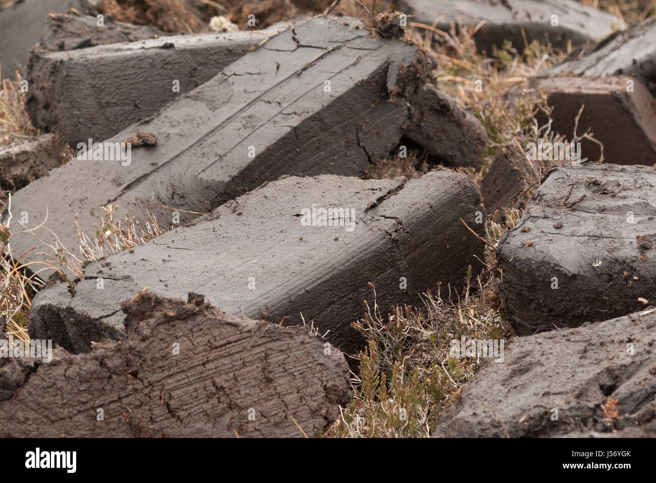 Peat freshly cut by crofter, drying to be used for fuel, Wester Ross, Scotland, UK - Stock Image