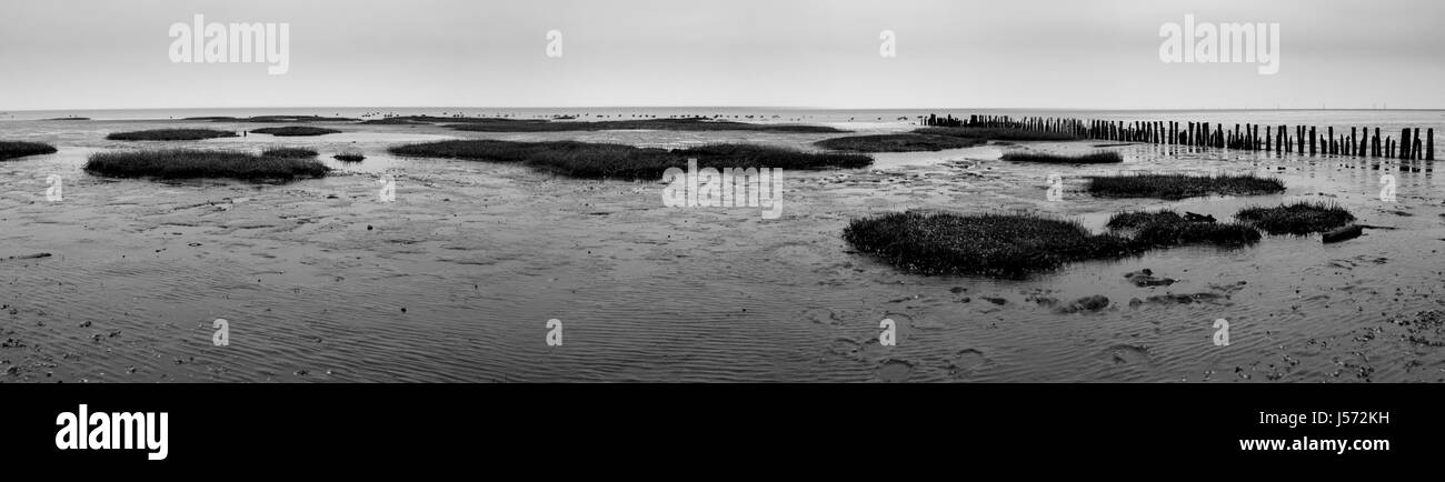 bw water north sea salt water sea ocean coast sight view outlook perspective - Stock Image