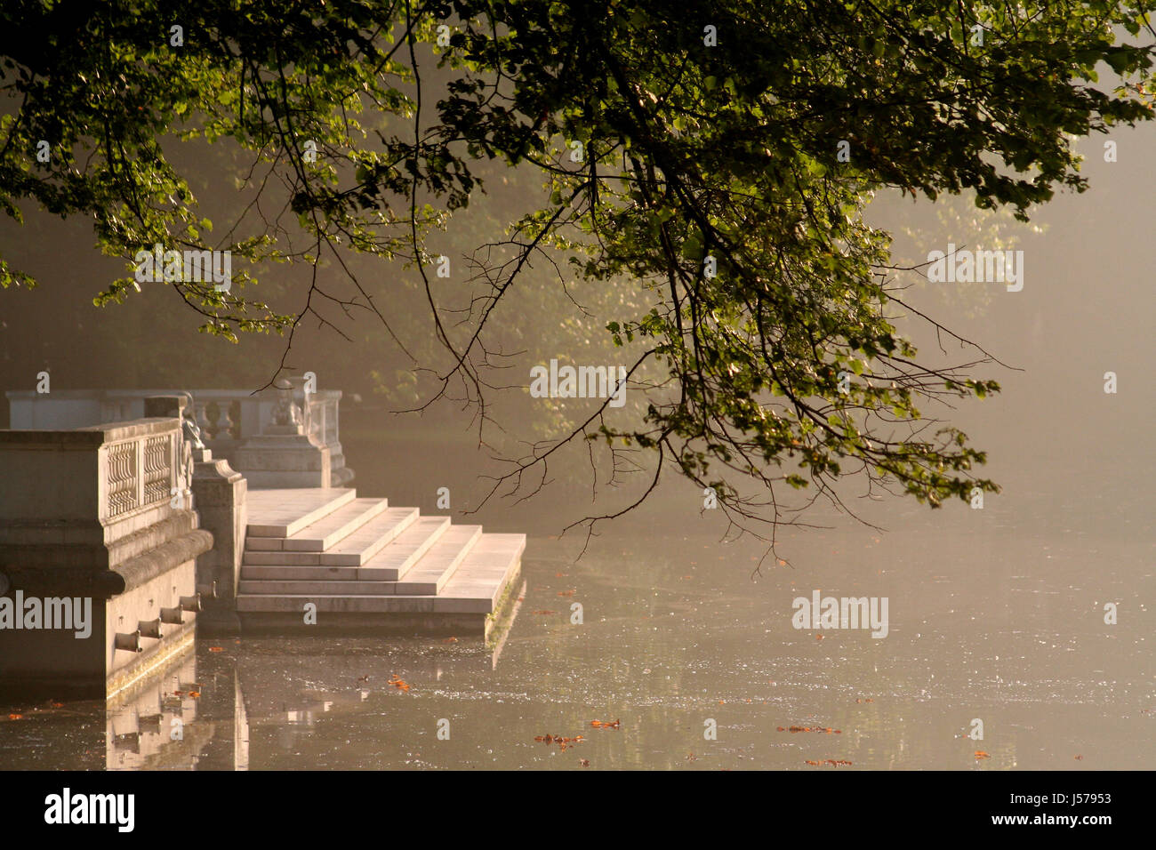 stairs tree park leaves branches parkway late summer water fall autumn steps Stock Photo