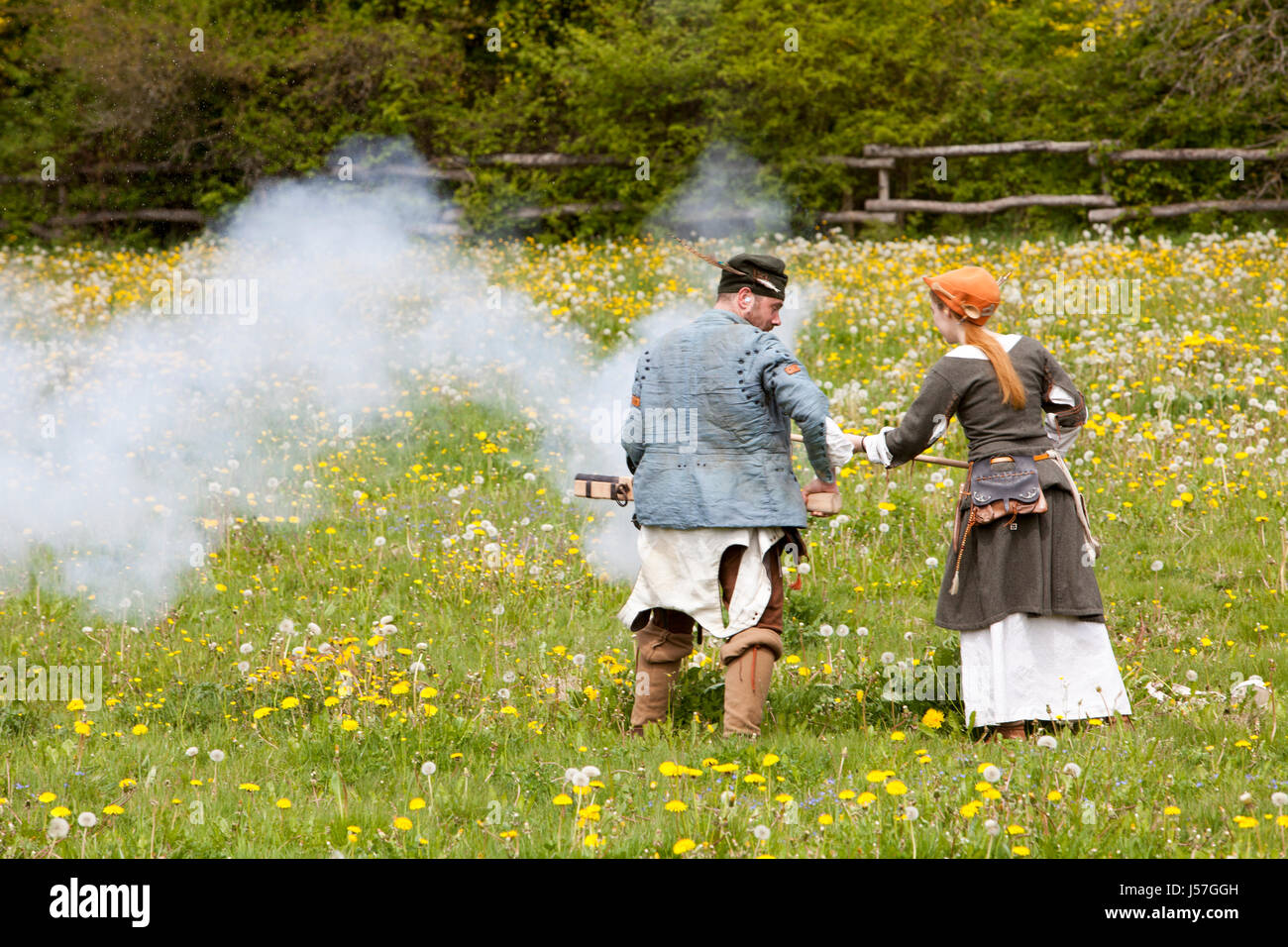 Hand cannons being fired by a reenactment group, reconstructed medieval house, Nienover, Bodenfelde, Lower Saxony, - Stock Image