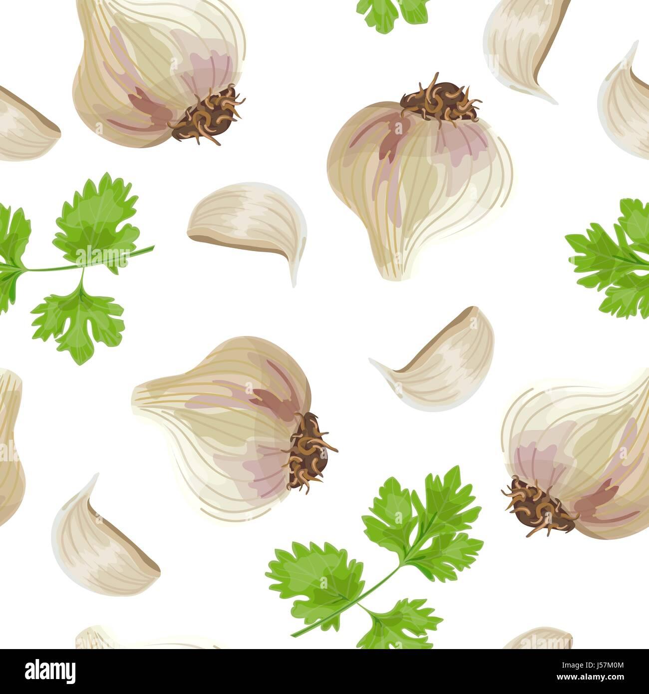 Fresh parsley and garlic. seamless pattern vector - Stock Vector