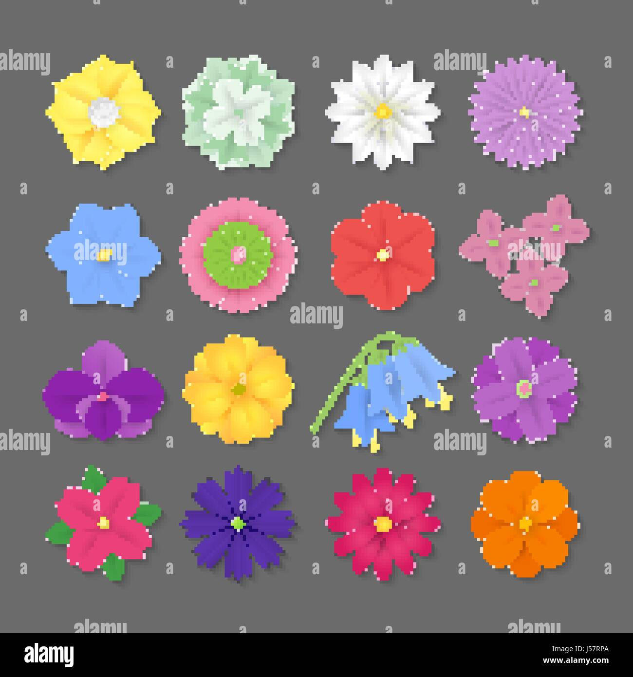 Colorful Vector Paper Flowers Illustration 3d Origami Abstract