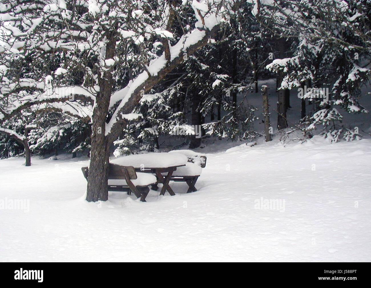 winter calm Stock Photo