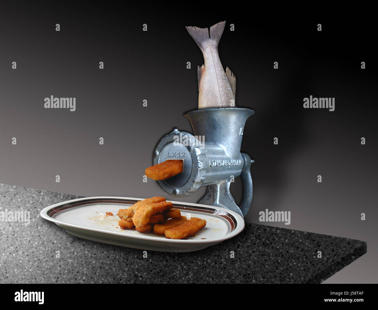 food aliment kitchen cuisine plate pisces mincer eating eat eats dine dining Stock Photo