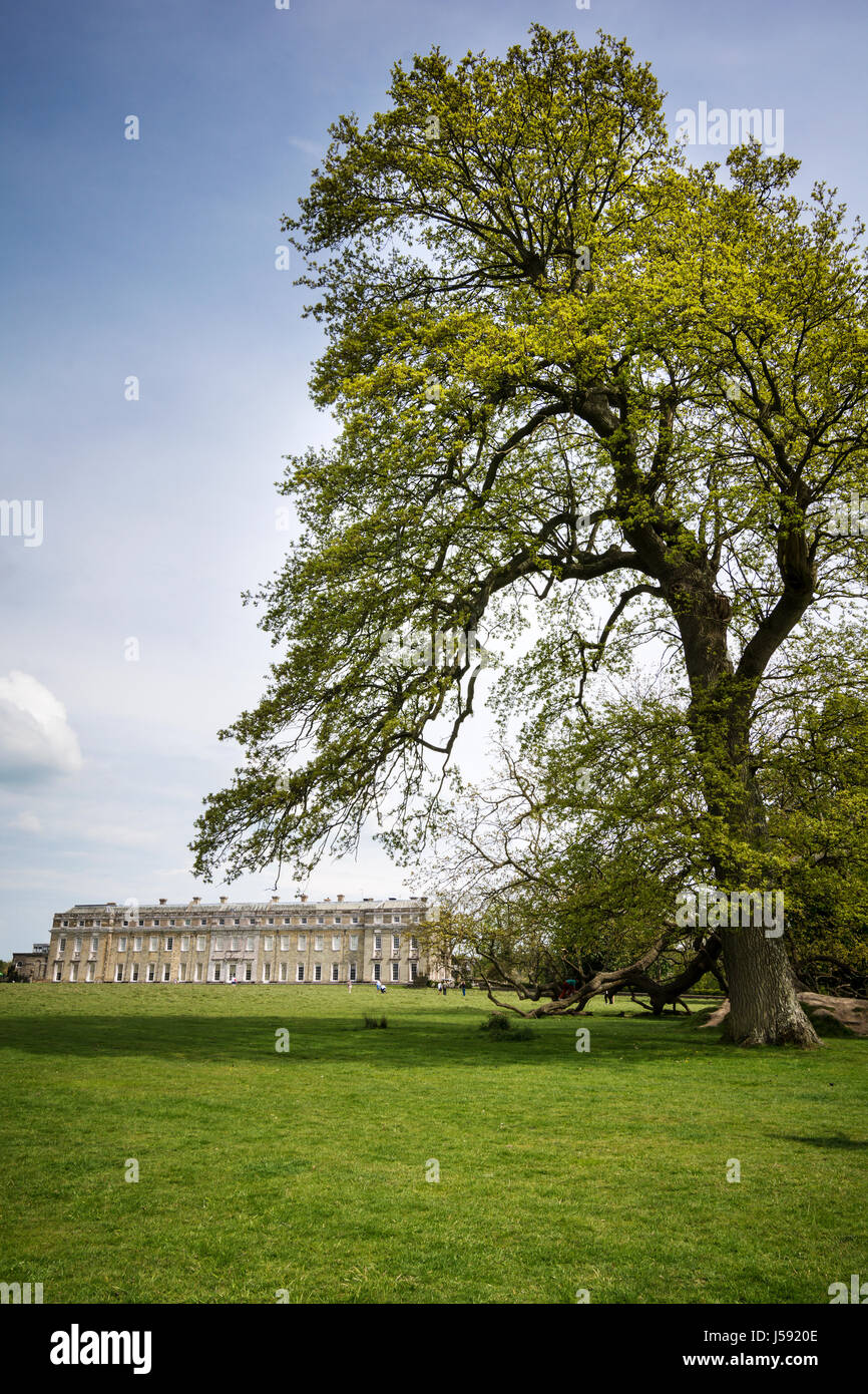 Petworth House and grounds in Sussex - Stock Image