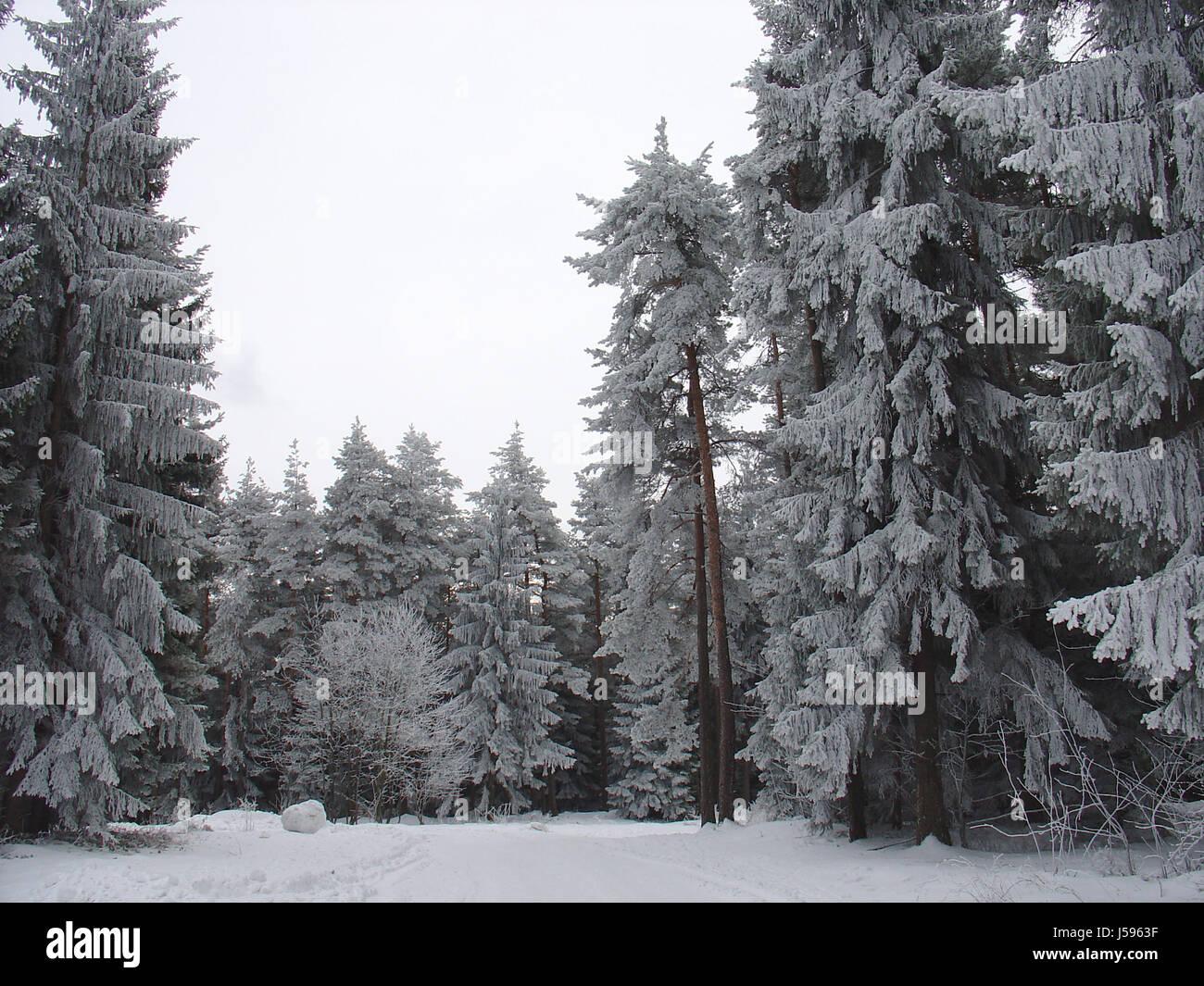 it's still winter ... Stock Photo