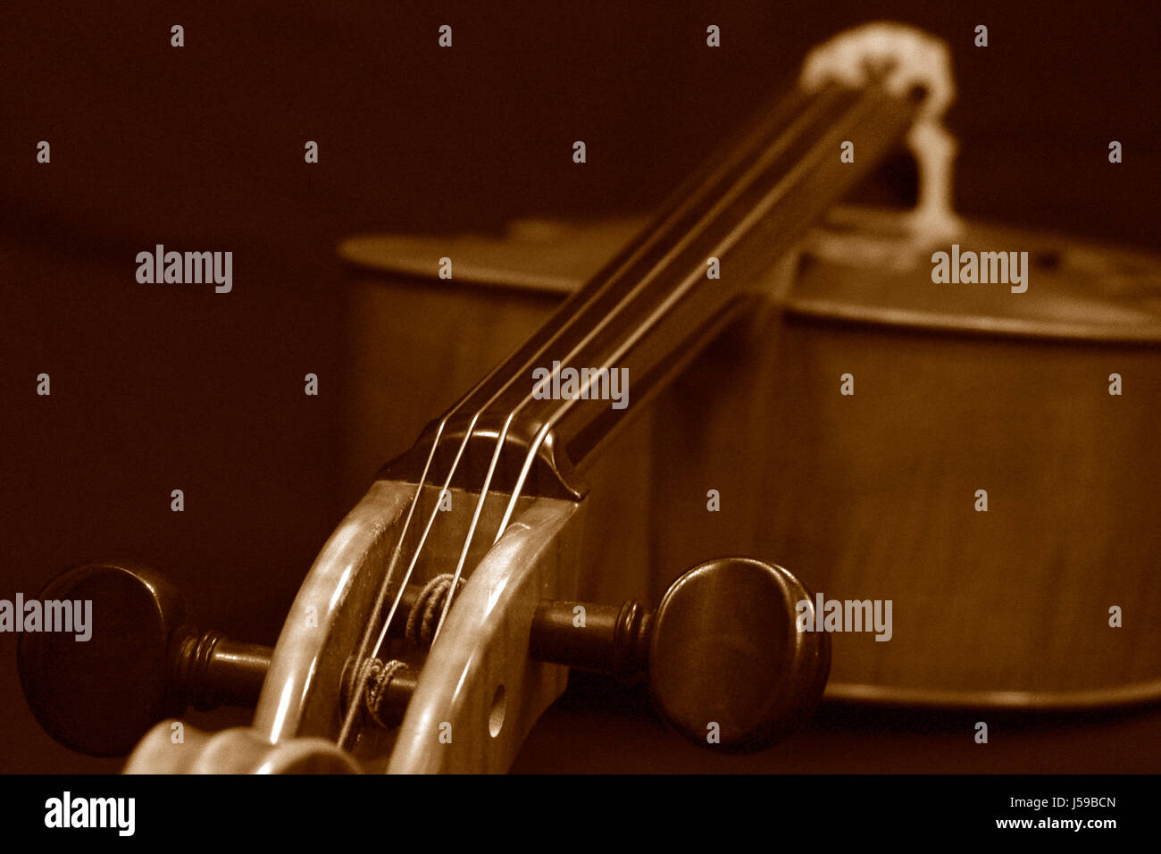 sepia classical violin bowed instrument duplex fingerboard cello contrabass - Stock Image