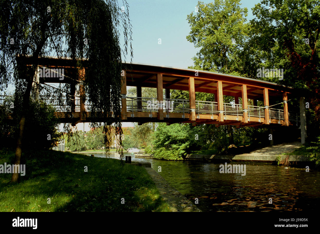 tree trees park plant bridge potsdam brandenburg parkway biotop footbridge Stock Photo
