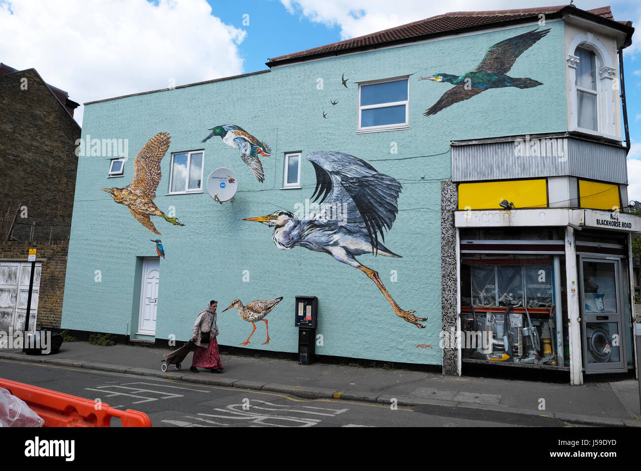 Bird mural of flying wetlands birds on the wall of a building on Coppermill Lane in Walthamstow, East London UK - Stock Image