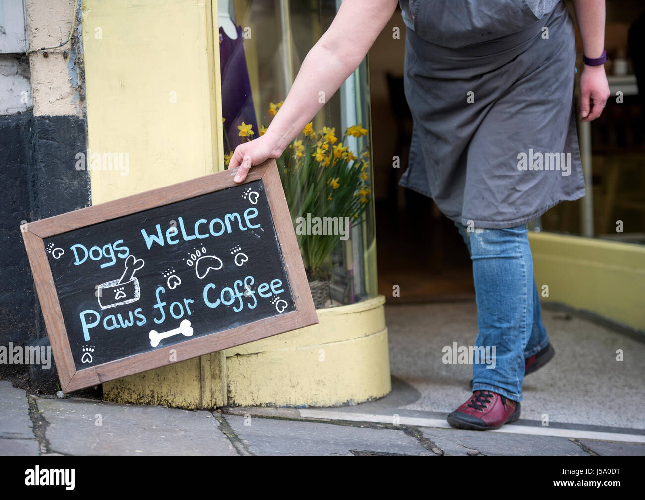 Dog friendly cafe on Stony St in Frome, Somerset UK Stock Photo