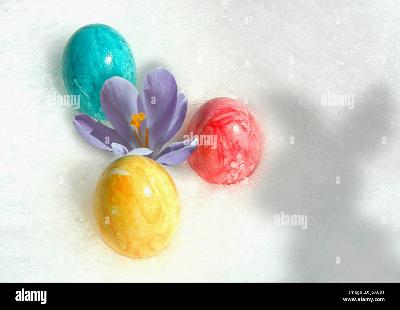 green,easter,spring,hare,easter-bunny,Easter eggs,snow,red,yellow Stock Photo
