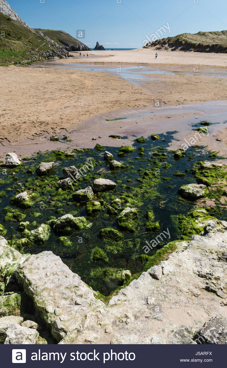 Broad Haven South beach at the bottom of Bosherton Lakes in Pembrokeshire, South Wales in the UK with Church Rock - Stock Image