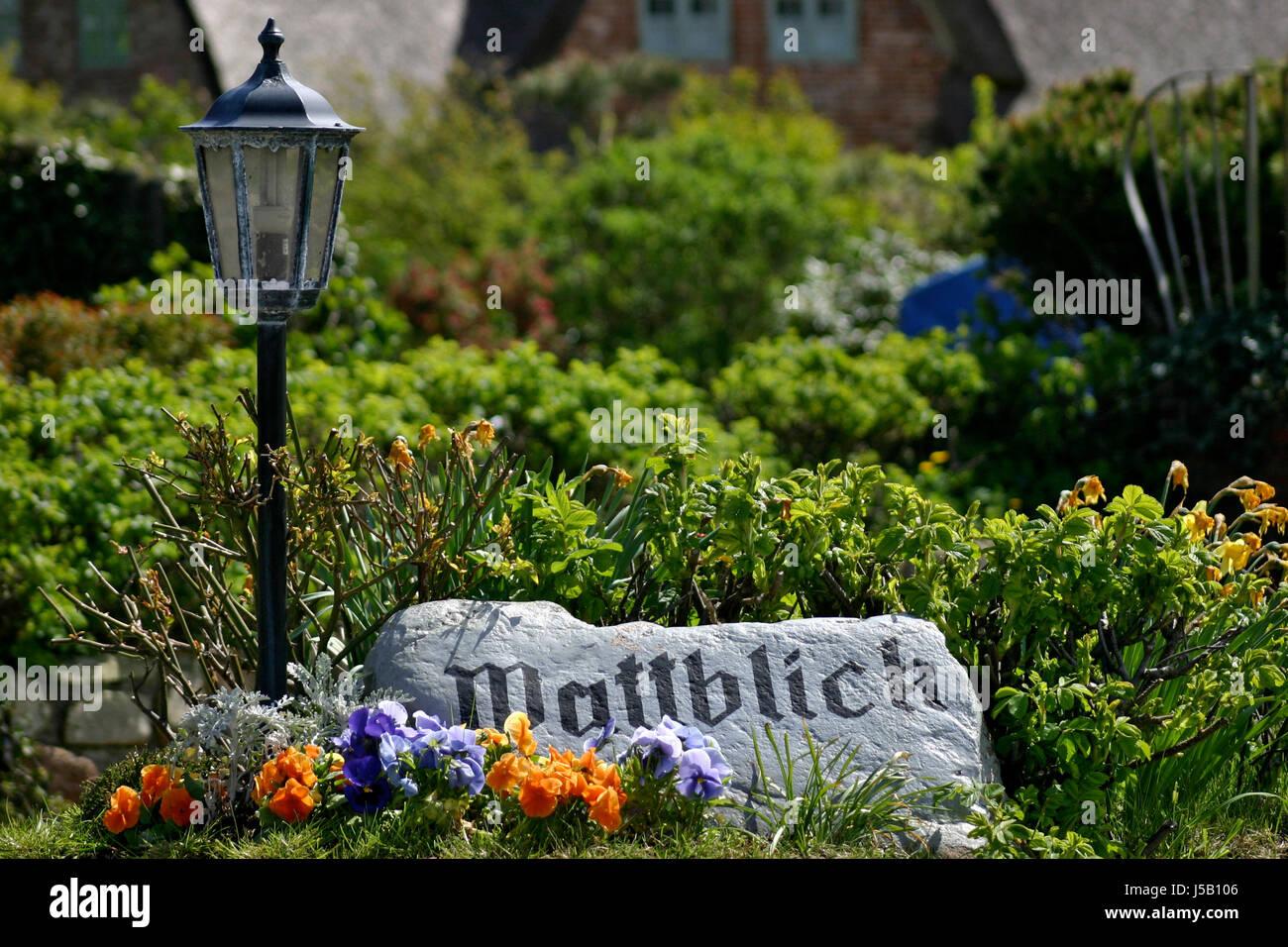 garden stone flower flowers plant beach seaside the beach seashore writing font - Stock Image