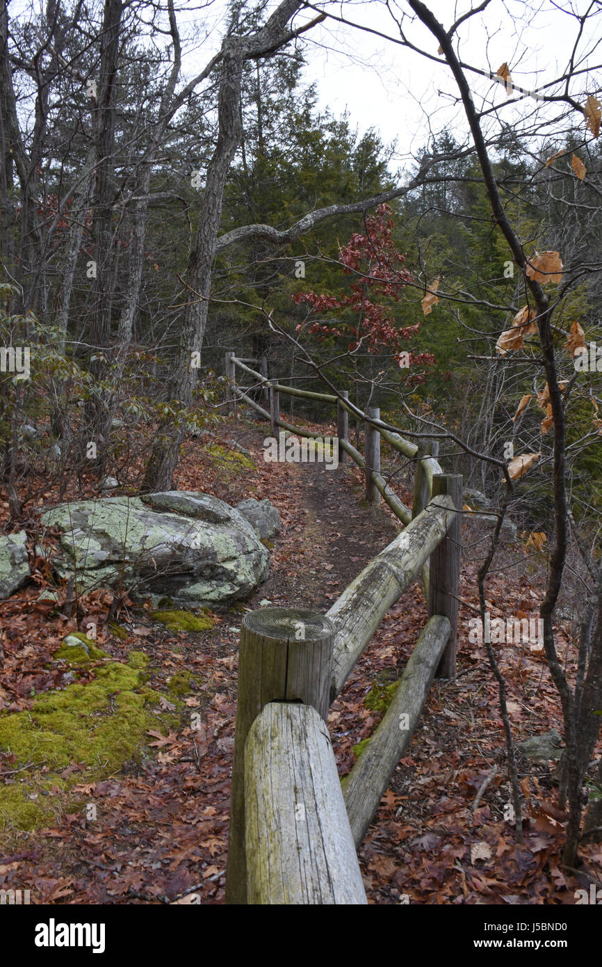 Beckoning trail through moody landscape - Stock Image