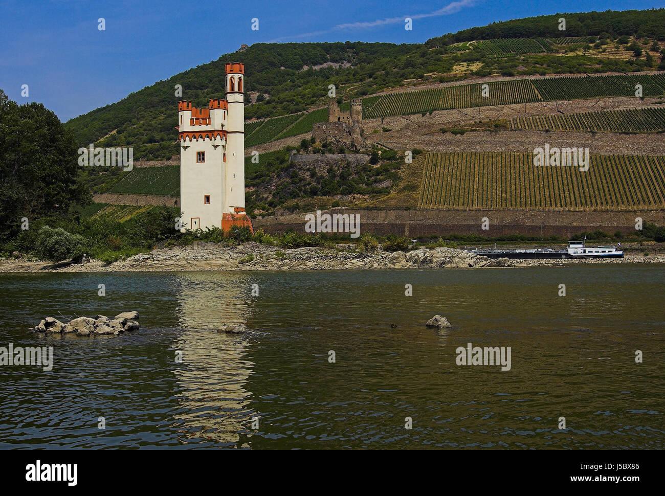 tower rhine ruins myth saw isle island chateau castle middle ages museturm - Stock Image
