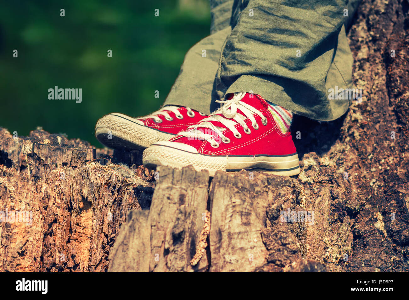 Female feet in bright red canvas sneakers, standing on a tree stump, wearing green linen pants - Stock Image