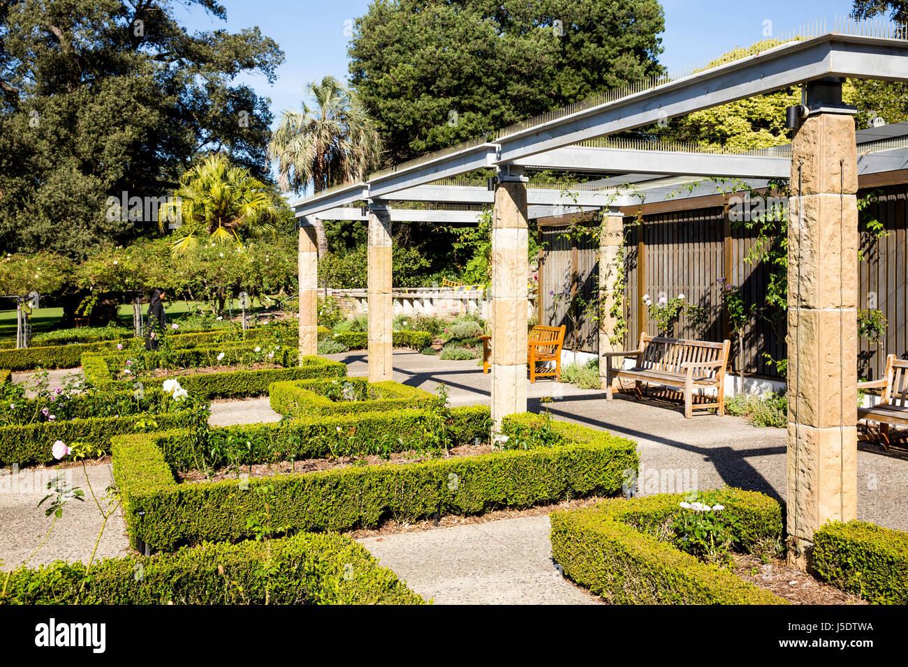The Rose Garden in the Royal Botanic Gardens in Sydney,Australia - Stock Image