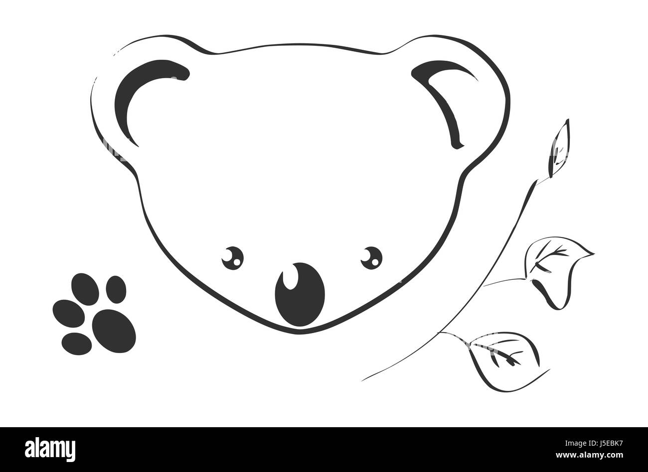 graphic animal bear australia illustration drawing photo picture image copy - Stock Image