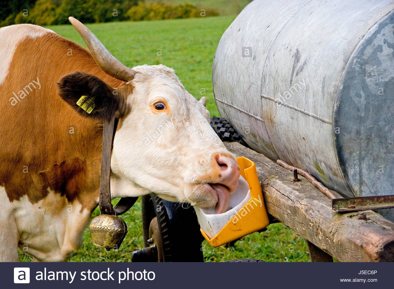 mhmm that tastes good Stock Photo