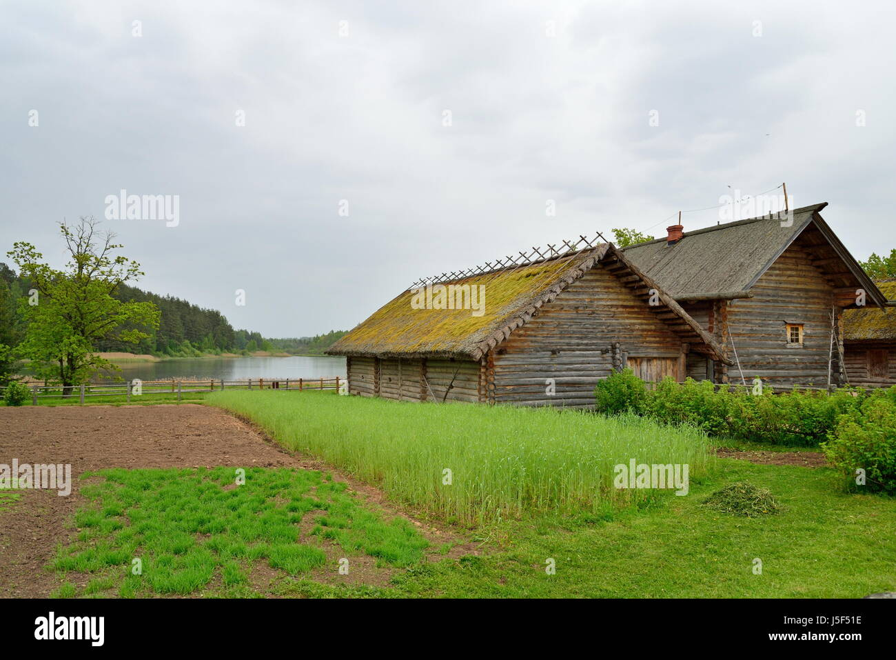 The garden and the old Russian log hut in Pushkin Mikhailovskoe summer cloudy day - Stock Image