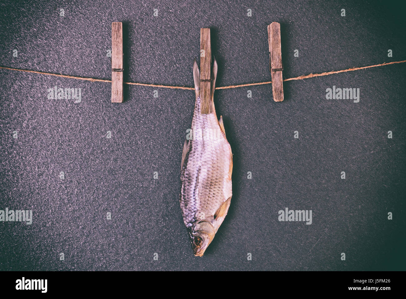 Dried fish hanging on the rope, black background Stock Photo