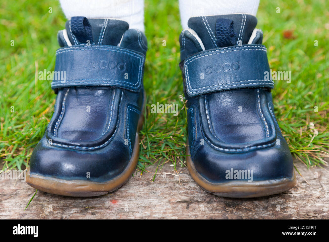 Childs / kid / young kids / children 's shoes on the wrong feet, so putting the right shoe on the left foot - Stock Image