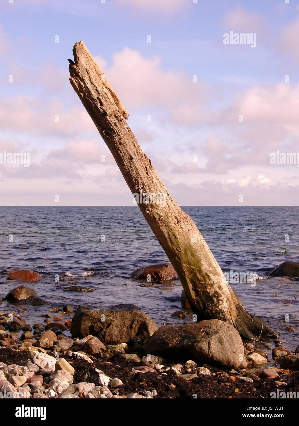 blue,tree,stone,wave,quiet,firmament,sky,clouds,old,stumpf meer Stock Photo