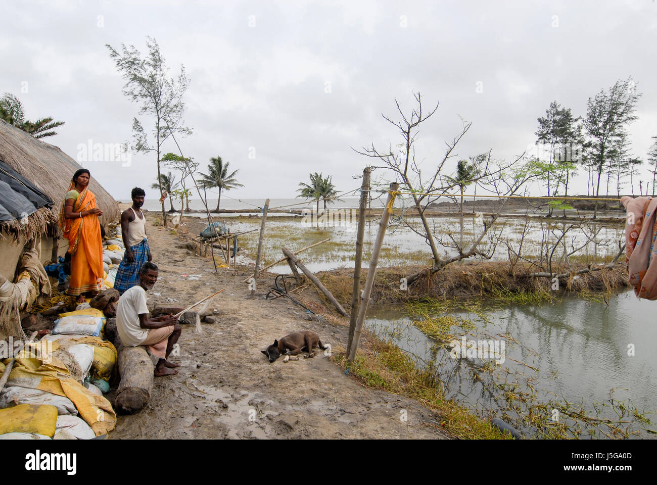 INDIA, West Bengal, Ganges river delta Sundarbans , Sagar Island , broken dyke due to sea erosion and rising sea - Stock Image