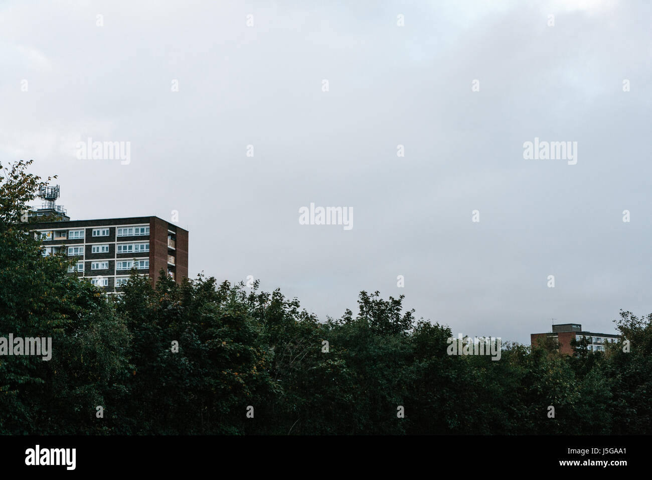 Social housing in the Tiger's Bay area of Belfast. - Stock Image