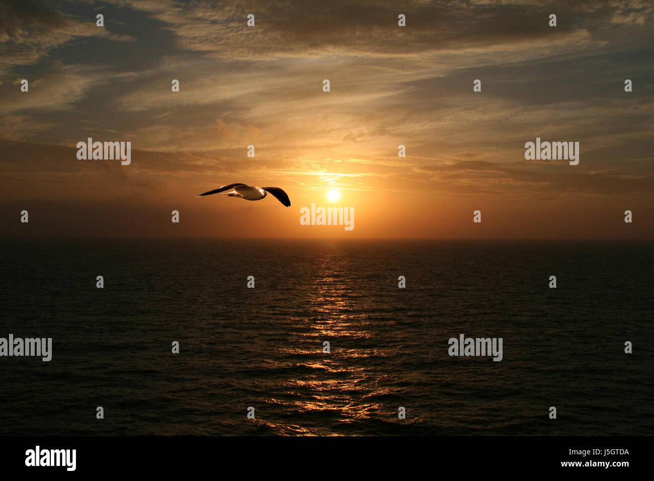 blue horizon sunset romantic waves sail reflection romanticism width mood Stock Photo