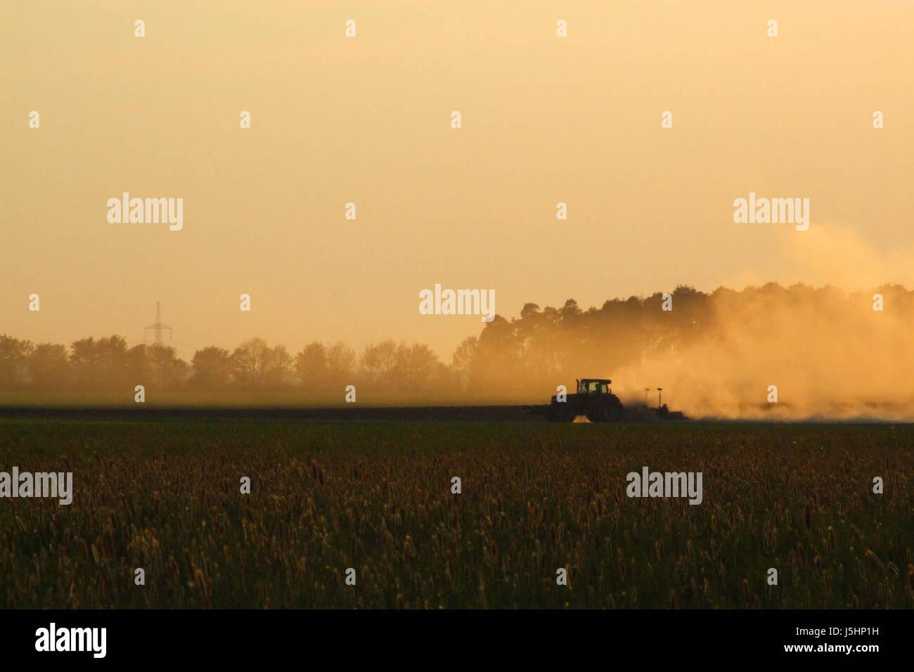 agrarian dust agriculture farming dryness drought erosion dry dried up barren Stock Photo
