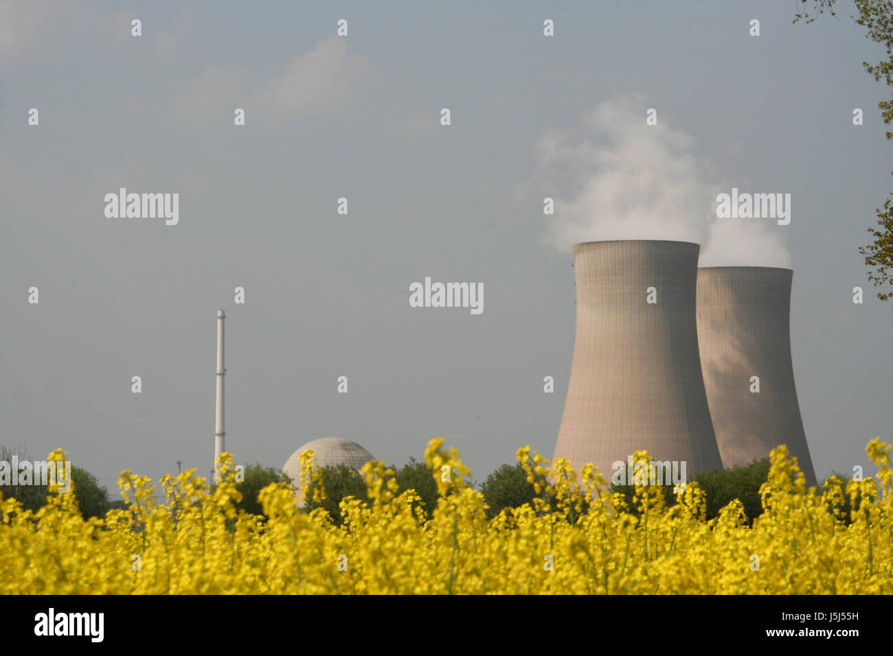 environment enviroment bucolic tree trees dome power station cooling tower - Stock Image