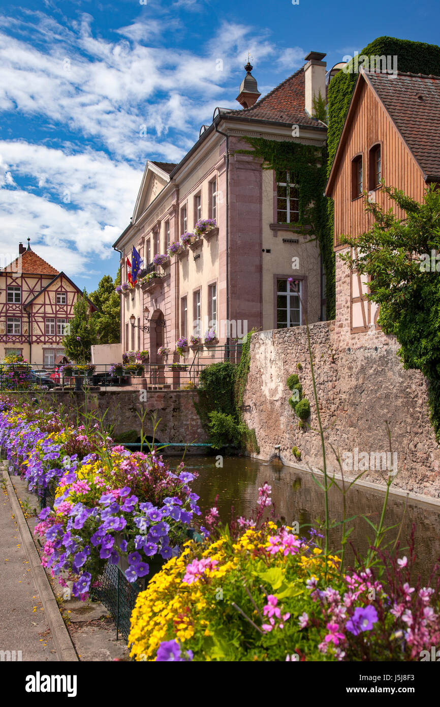 Flowers line the walkway to the Hotel de Ville (Marie) and the medieval town of Riquewihr, Alsace, France Stock Photo