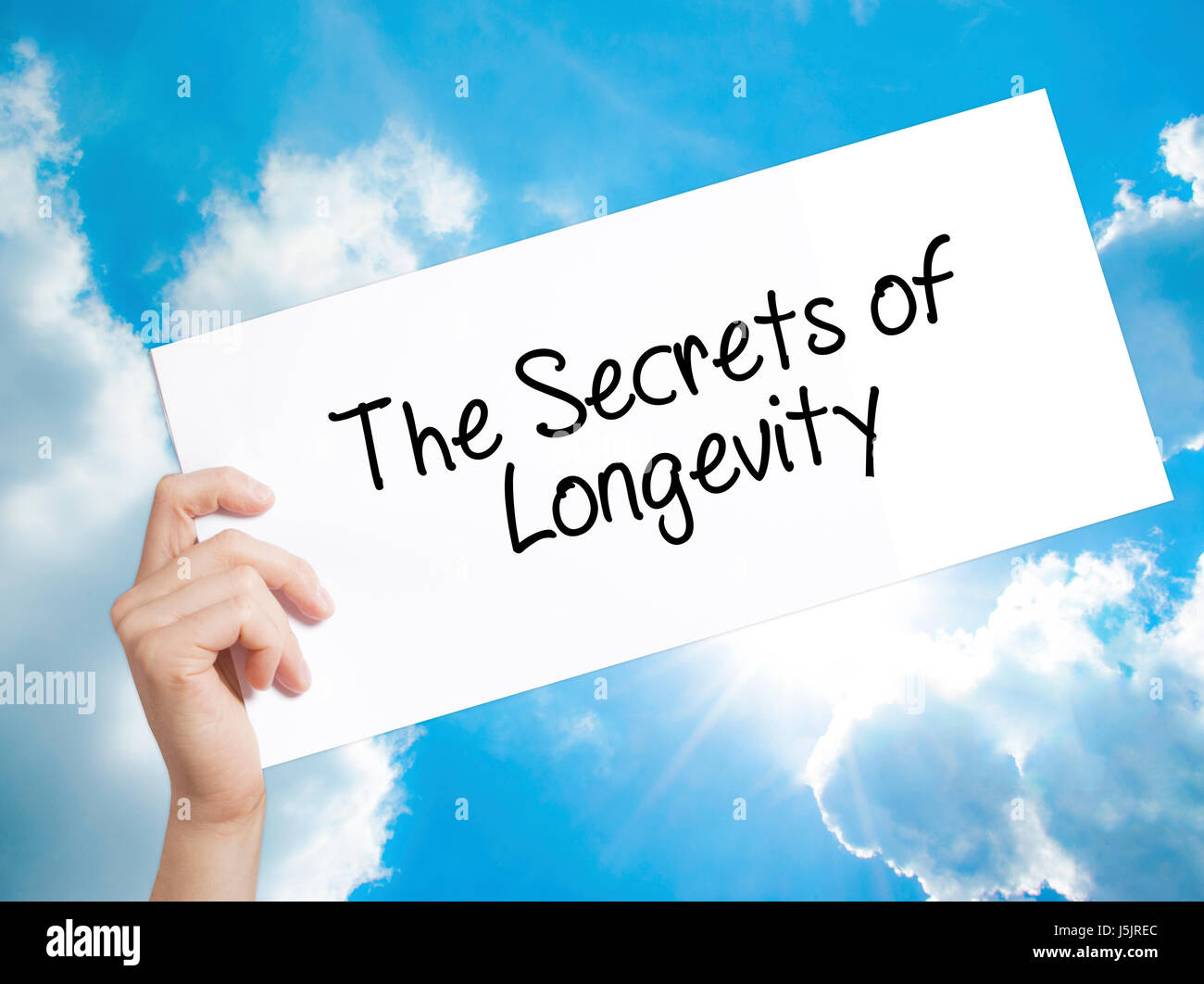 The Secrets of Longevity Sign on white paper. Man Hand Holding Paper with text. Isolated on sky background.   Business - Stock Image
