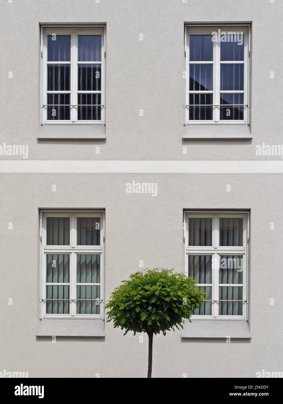 house building tree green window porthole dormer window pane sad facade dreary Stock Photo