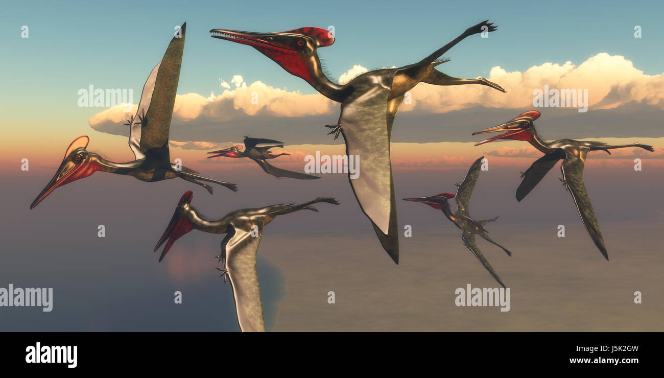Pterodactylus Pterosaurs in Flight - A flock of Pterodactylus Pterosaurs fly out to the ocean to hunt for fish in - Stock Image