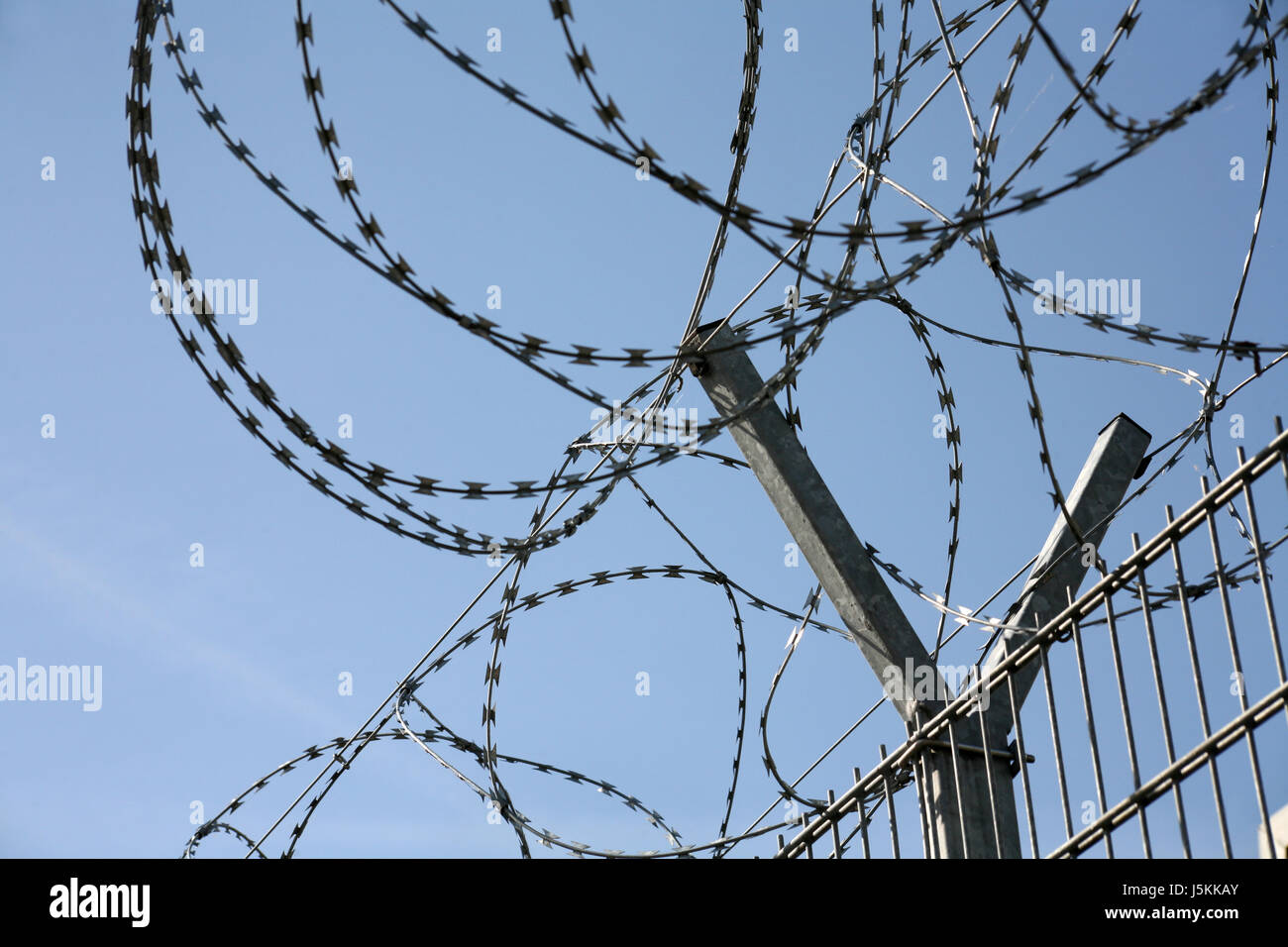 barbed wire entanglement - Stock Image