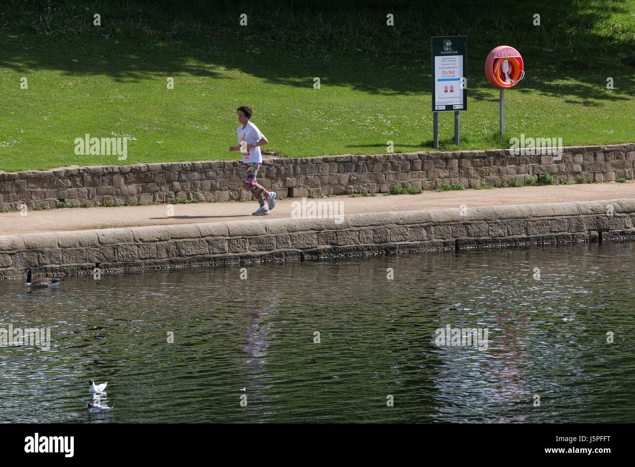 Leeds, UK. 18th May, 2017. A lady enjoying a morning jog around Roundhay Park in Leeds on 18 May 2017.  A bright - Stock Image