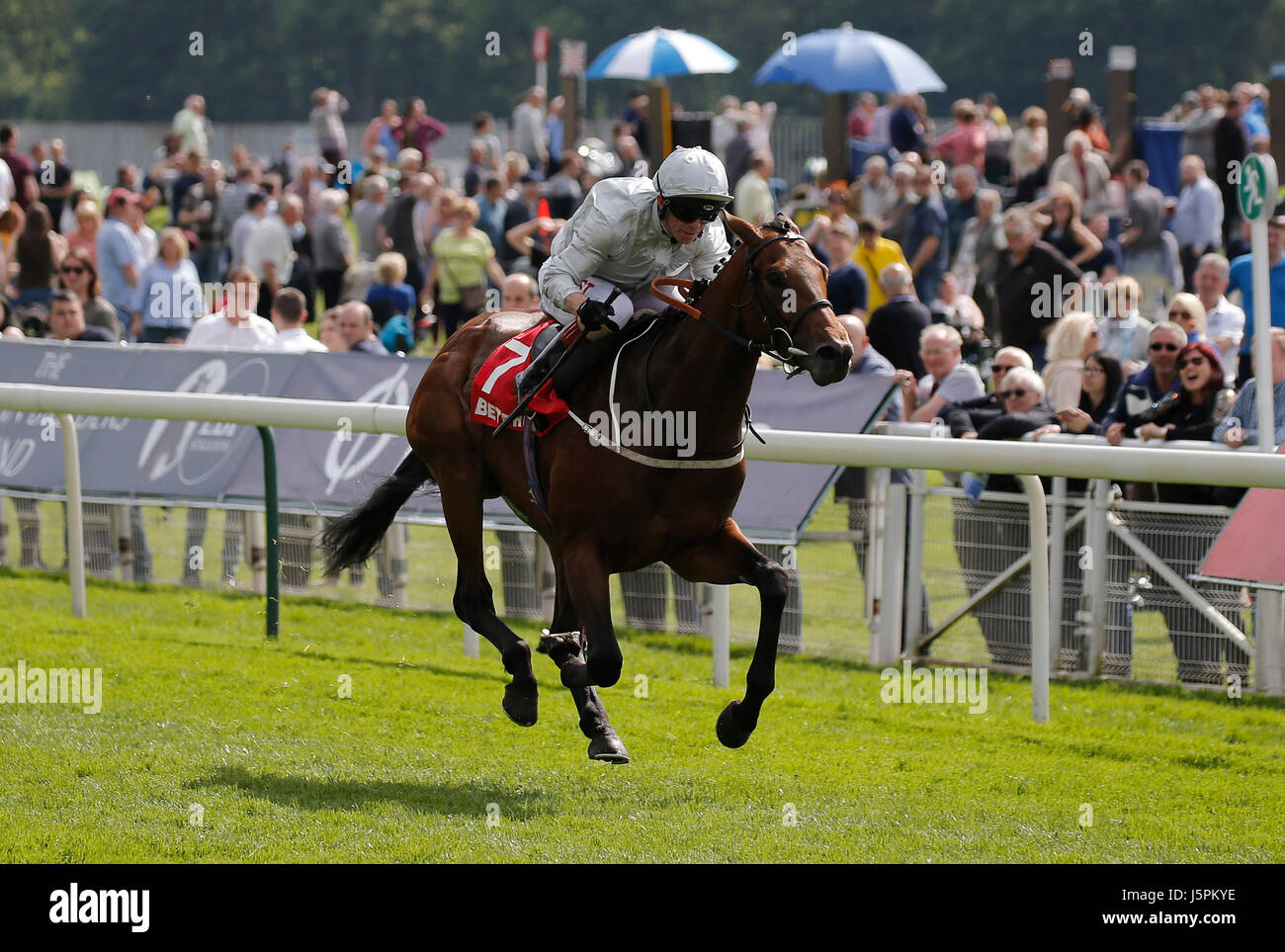 York, UK. 18th May, 2017. Permian Ridden By Franny Norton Wins The The Betfred Dante Stakes Dante Festival 2017, - Stock Image